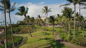 棕榈胡同,导致对在毛伊,夏威夷的时兴的手段蒙太奇卡帕拉奥阿的美丽的轨道美丽如画的风景  股票录像