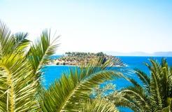 棕榈风景海岛 免版税图库摄影