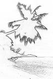 棕榈风格化剪影在一个热带海滩的 概述剪影 免版税库存照片