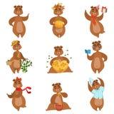 棕熊不同的活动被设置娘儿们字符贴纸 免版税库存图片