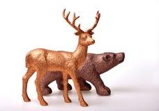 棕熊和金黄鹿 免版税库存照片