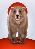 棕熊或北美灰熊,俄国军事的标志 免版税库存照片
