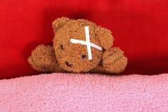 棕熊有头疼 免版税库存图片