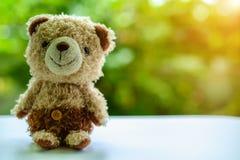 棕熊玩偶开会 库存图片
