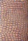 棕色人造革纹理 库存照片
