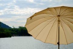 棕色伞 免版税库存照片