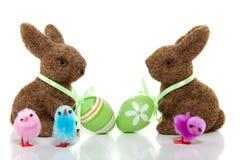 棕色兔宝宝二 免版税库存图片