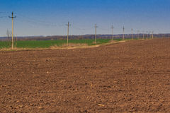 棕色和绿色领域看法在早期的春天 免版税图库摄影
