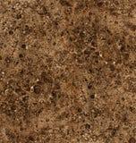 棕色大理石 免版税库存图片