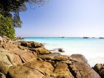 棕色岩石、密林绿色、鲜绿色海和蓝天秀丽  免版税库存照片