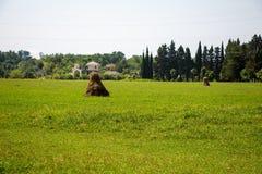 棕色干草堆照片在绿色领域中的 免版税图库摄影