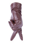 棕色手套皮革 免版税图库摄影