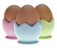 棕色杯子怂恿蛋柔和的淡色彩三 免版税库存照片