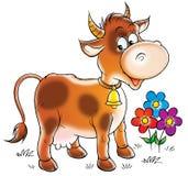 棕色母牛 皇族释放例证