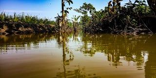 棕色河 库存图片