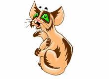 棕色猫重点例证爱 图库摄影
