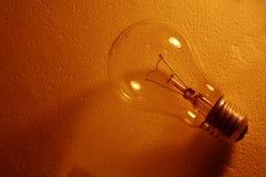 棕色电灯泡 库存照片