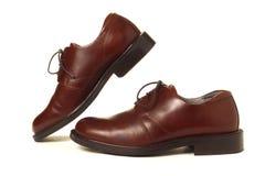 棕色皮革人鞋子 免版税图库摄影