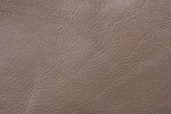 棕色皮革布料样品缝合的 免版税图库摄影