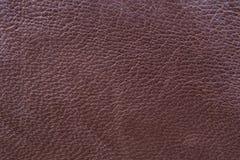 棕色皮革布料样品缝合的 免版税库存图片