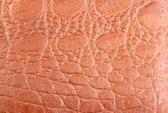 棕色皮革的织地不很细和样式 免版税库存照片