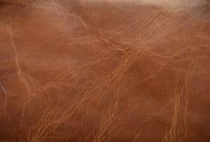 棕色皮革纹理 库存图片
