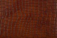 棕色皮革纹理 免版税库存照片