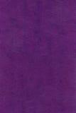 棕色皮革自然纹理紫罗兰 库存图片