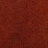 棕色皮革 免版税库存图片