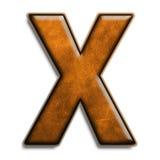 棕色皮革x 免版税图库摄影