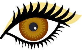 棕色眼睛 皇族释放例证