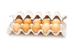 棕色纸盒蛋程序包 免版税库存图片