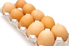 棕色纸盒蛋程序包 免版税图库摄影