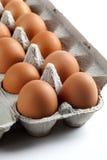 棕色纸盒蛋鸡蛋 免版税图库摄影