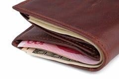 棕色美元皮革钱包yuans 免版税图库摄影