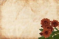 棕色花裱糊红色 图库摄影