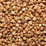 棕色荞麦谷物 免版税库存照片