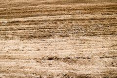 棕色被犁的干陆纹理有床的,沙子条纹  免版税库存图片