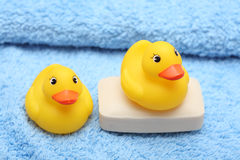 浴棕色迈克尔照片r时间 免版税库存图片