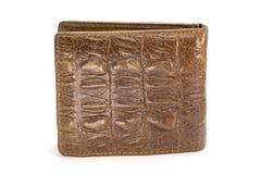 棕色钱包的图象由被隔绝的鳄鱼皮革制成 库存照片
