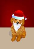 棕色长卷毛狗圣诞老人 免版税库存图片