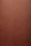 棕色门纹理 免版税库存照片