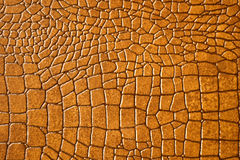 棕色鳄鱼snakeskin纹理 免版税库存图片