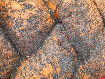 棕色麦子豪华的可口柳条大面包,与黑鸦片的小圆面包纹理  抽象背景异教徒青绿 免版税图库摄影