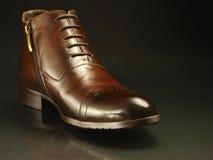 棕色黑暗的查出的鞋子 库存照片