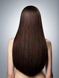 棕色头发长的平直的妇女 查出的背面图白色 免版税库存照片