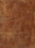 棕色hq皮革纹理 库存照片