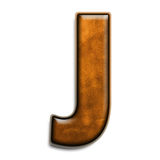 棕色j皮革 免版税图库摄影