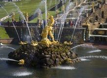 森山雕象盛大小瀑布的碗的 peterhof 免版税图库摄影