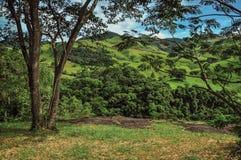 森林、小山和一个大平的岩石概要在Joanà ³ polis附近镇  免版税库存图片
